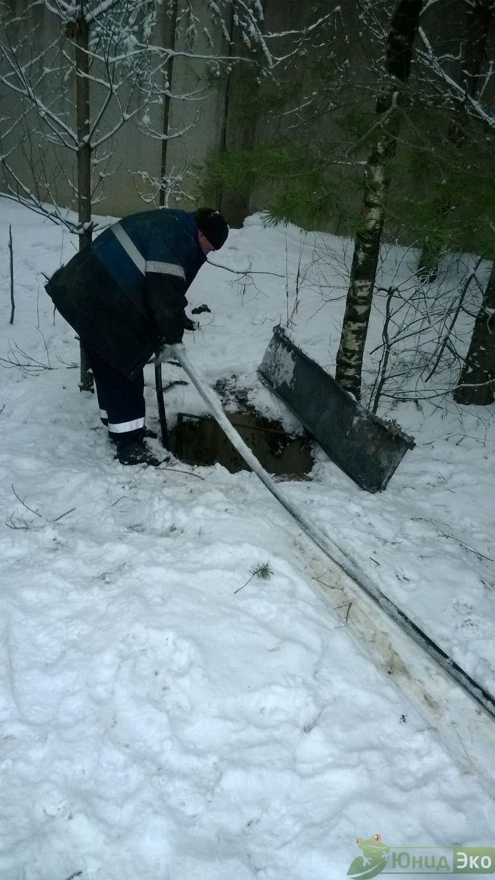 ФГБУ науки Зоологический институт Российской Академии Наук